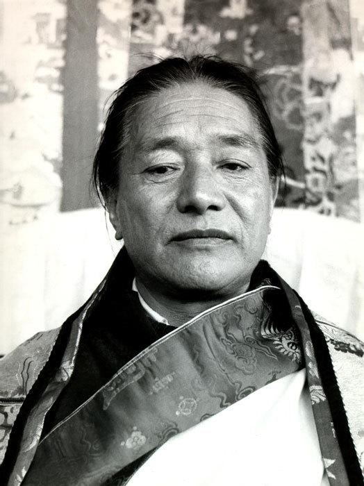Dudjom Jigdral Yeshe Dorje